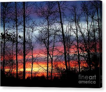 Canvas Print featuring the photograph Carolina Sunset by Sue Melvin