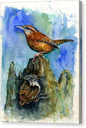 Carolina Wren And Baby Canvas Print by John D Benson