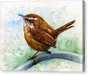 Carolina Wren Large Canvas Print