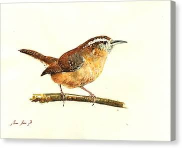 Carolina Wren Watercolor Painting Canvas Print by Juan  Bosco