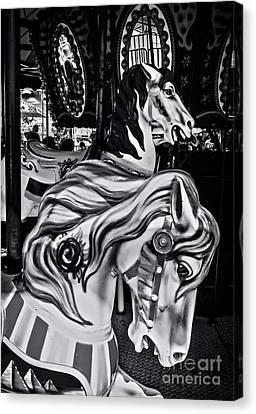 Carousel Of Despair 6 Canvas Print
