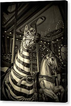 Canvas Print featuring the photograph Carousel Zebra by Caitlyn Grasso