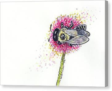 Carpenter Bee Canvas Print by Maria Bolton-Joubert