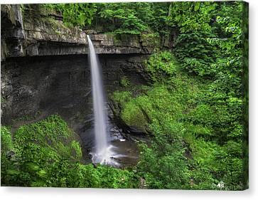 Skaneateles Lake Canvas Print - Carpenter Falls 2 by Mark Papke