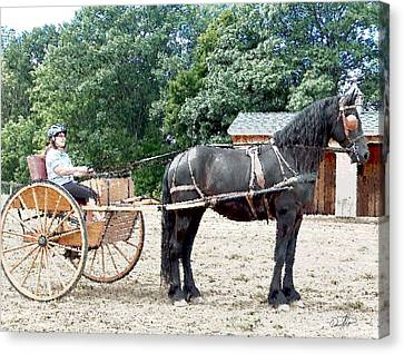 Carriage Driving Canvas Print by David Syers