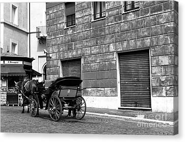 Carriage In Piazza Navona Canvas Print