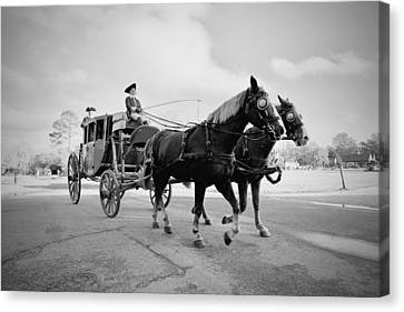 Carriage Ride In Williamsburg Canvas Print