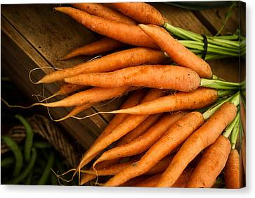 Carrots Canvas Print by Tanya Harrison