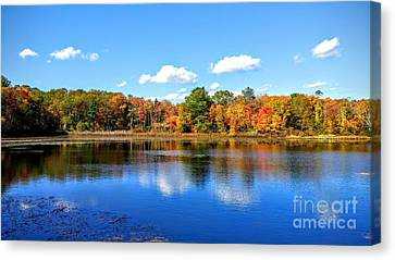 Carver Pond Bridgewater Ma Canvas Print