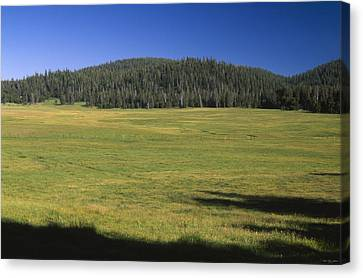 Casa Vieja Meadow - Golden Trout Wilderness Canvas Print by Soli Deo Gloria Wilderness And Wildlife Photography