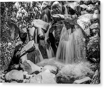 Canvas Print - Cascade Creek In Black And White by Bill Gallagher