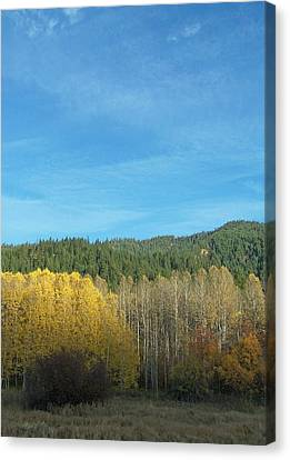 Cascade Fall Canvas Print