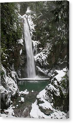 Cascade Falls In The Snow Canvas Print