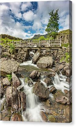 Cascading Stream Canvas Print by Adrian Evans