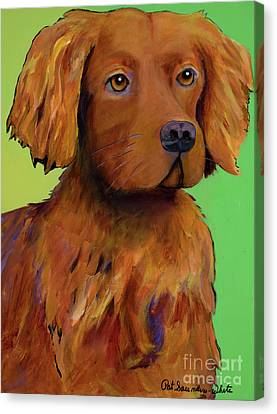 Working Dog Canvas Print - Cash by Pat Saunders-White