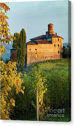 Castello - Barolo Canvas Print