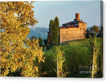 Castello Della Volta - Barolo II Canvas Print