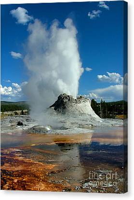 Bacteria Canvas Print - Castle Geyser Puttin by Katie LaSalle-Lowery