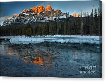 Canvas Print - Castle Mountain Icy Red Reflections by Adam Jewell