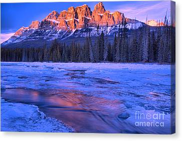 Canvas Print - Castle Mountain Purple Refelctions by Adam Jewell