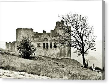 Castle On High Canvas Print