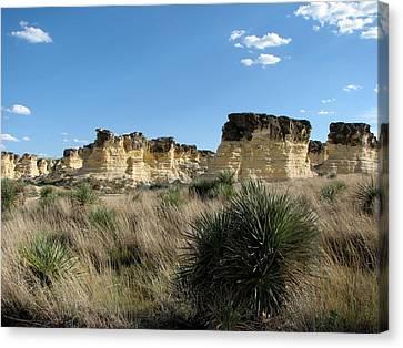 Castle Rock Badlands Canvas Print