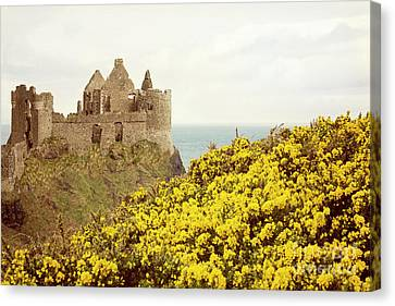 Canvas Print featuring the photograph Castle Ruins And Yellow Wildflowers Along The Irish Coast by Juli Scalzi