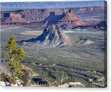 Castle Valley Overlook Canvas Print by Alan Toepfer
