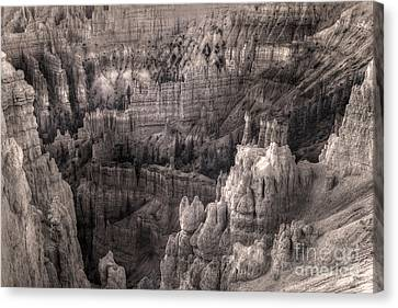 Castles Made Of Sand In The Hoodoos  Canvas Print by William Fields