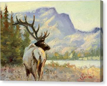 Casual Walk Elk Canvas Print by Larry Seiler