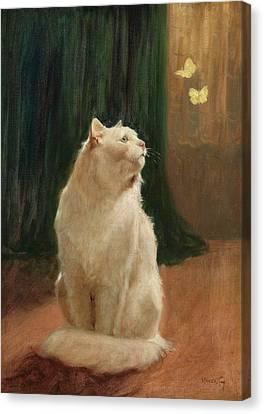 Cat And Butterflies Canvas Print by Arthur Heyer