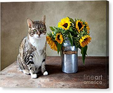 Flower Canvas Print - Cat And Sunflowers by Nailia Schwarz