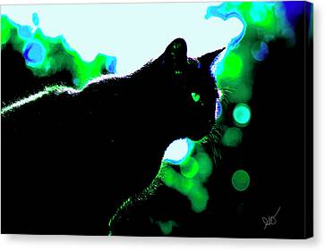 Cat Bathed In Green Light Canvas Print by Gina O'Brien