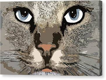 Cat Canvas Print by Cynthia Powell