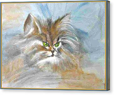 Canvas Print featuring the painting cat by Dragica  Micki Fortuna