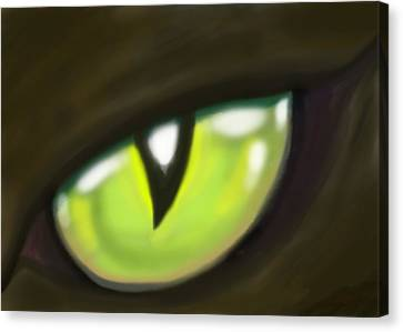 Cat Eye Canvas Print by Kevin Middleton