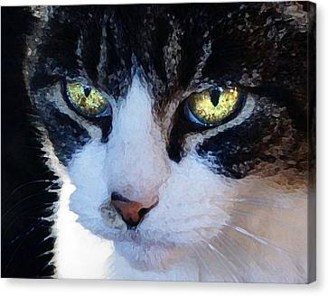 Canvas Print featuring the digital art Cat Eyes by Jana Russon