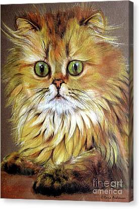Cat Canvas Print by Ilaria Andreucci