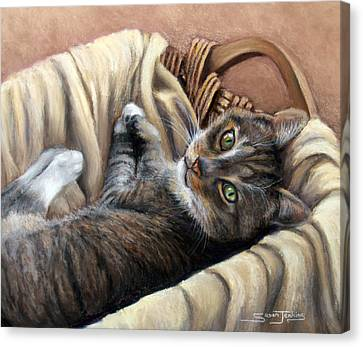 Cat In A Basket Canvas Print by Susan Jenkins