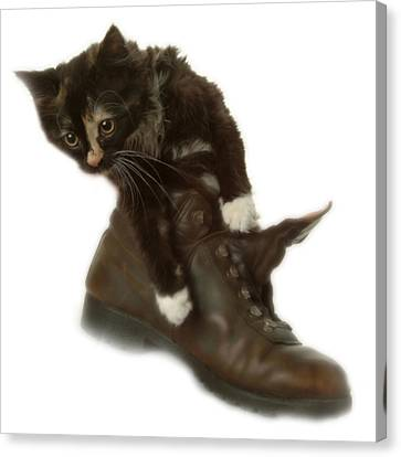 Cat In Boot Canvas Print