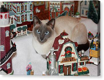 Cat In Christmas Village Canvas Print