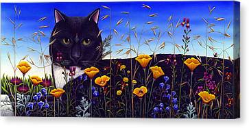 Cat In Flower Field Canvas Print by Carol Wilson