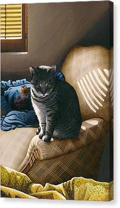 Cat In Shadows Canvas Print by Carol Wilson