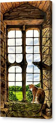 Cat In The Castle Window Canvas Print