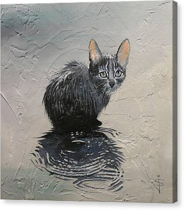 Cat In The Rain Canvas Print by Jan Szymczuk