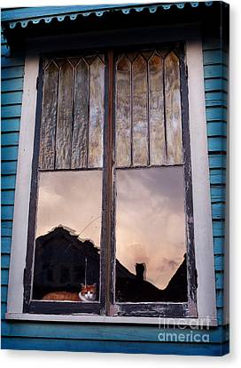 Cat In The Window Canvas Print by Jeanne  Woods