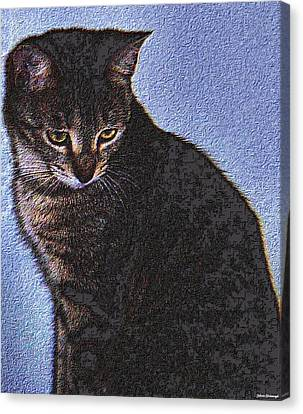 Cat Canvas Print by Johann Todesengel