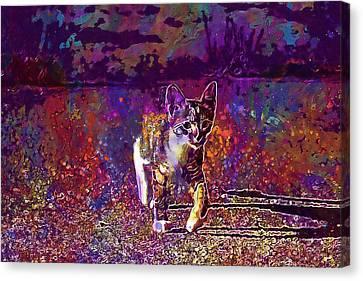 Canvas Print featuring the digital art Cat Kitten Cat Baby Mackerel  by PixBreak Art