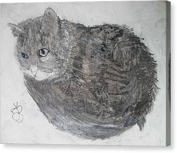 Canvas Print featuring the mixed media Cat Named Shrimp by AJ Brown