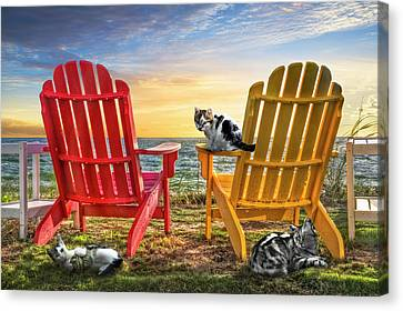 Canvas Print featuring the photograph Cat Nap At The Beach by Debra and Dave Vanderlaan